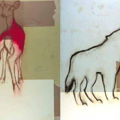 doe-cave-drawings